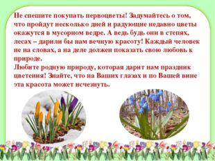 Не спешите покупать первоцветы! Задумайтесь о том, что пройдут несколько дней