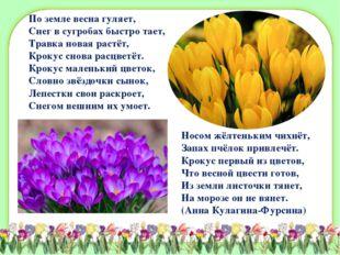 По земле весна гуляет, Снег в сугробах быстро тает, Травка новая растёт, Крок