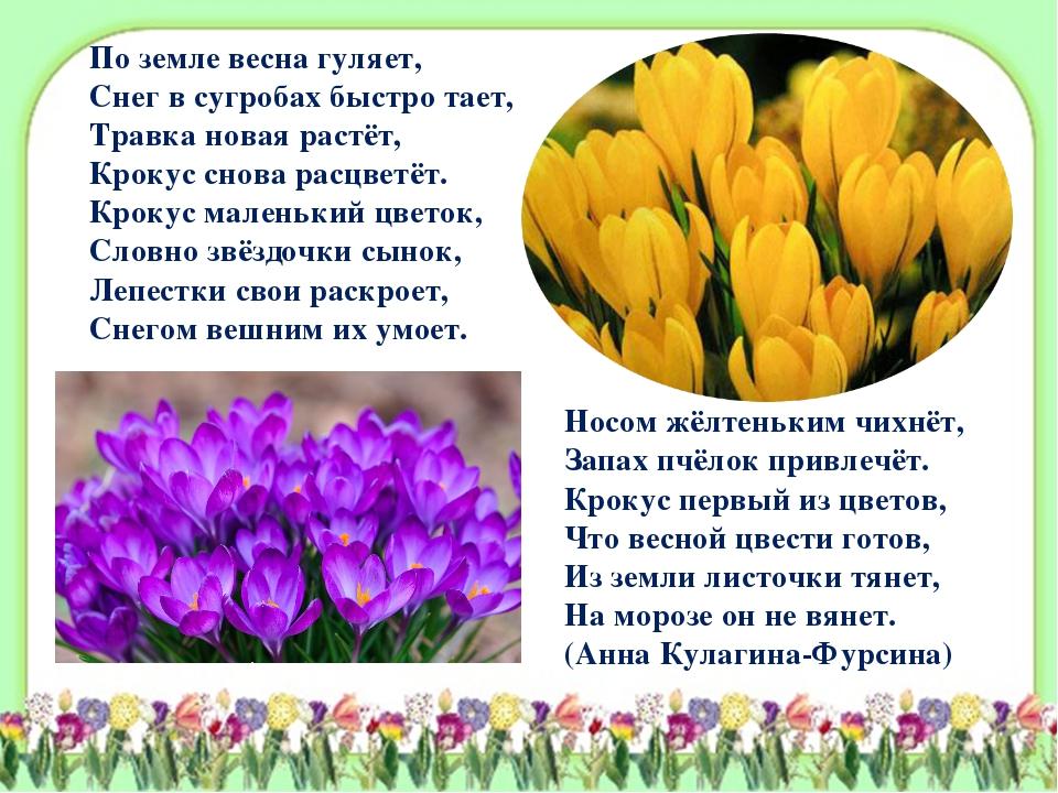 По земле весна гуляет, Снег в сугробах быстро тает, Травка новая растёт, Крок...