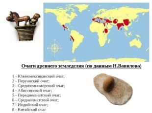 Очаги древнего земледелия (по данным Н.Вавилова) 1 - Южномексиканский очаг; 2