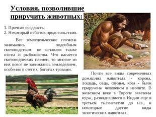 Условия, позволившие приручить животных: 1. Прочная оседлость; 2. Некоторый и