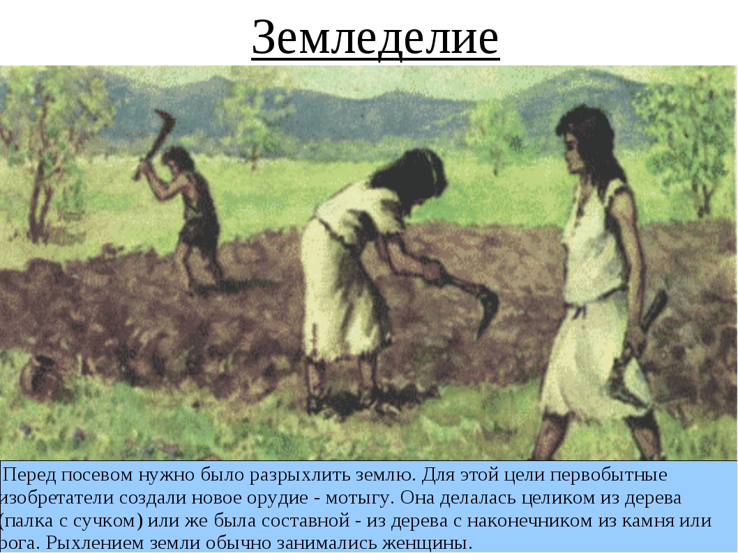 Перед посевом нужно было разрыхлить землю. Для этой цели первобытные изобрет...