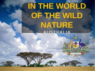 IN THE WORLD OF THE WILD NATURE AUSTRALIA