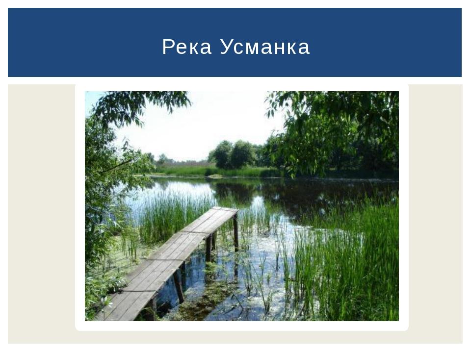 Река Усманка