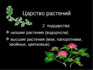 Царство растений 2 подцарства: низшие растения (водоросли) высшие растения (м