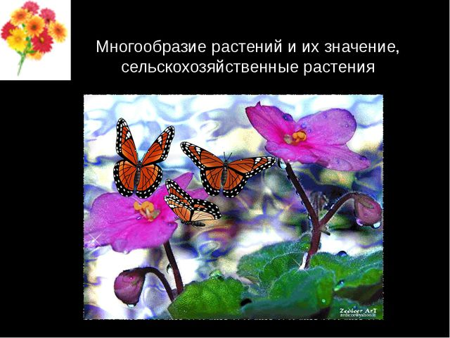 Многообразие растений и их значение, сельскохозяйственные растения