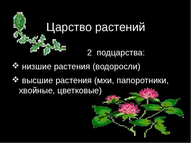 Царство растений 2 подцарства: низшие растения (водоросли) высшие растения (м...
