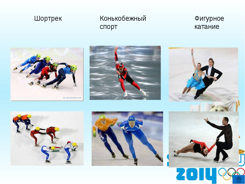 Бобслей Хоккей