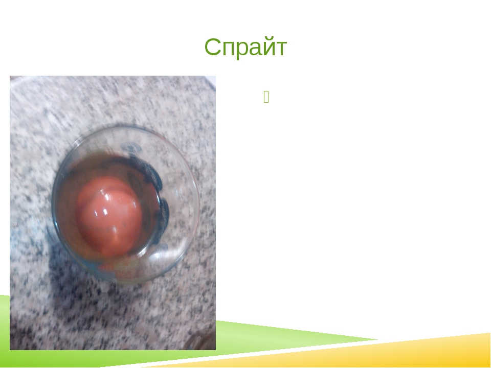 Спрайт Яйцо потемнело, вода помутнела. Видимых изменений яйца не произошло