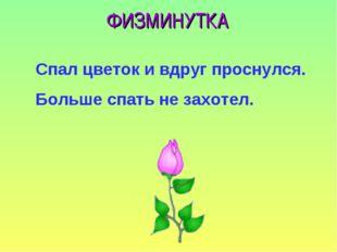 ФИЗМИНУТКА Спал цветок и вдруг проснулся. Больше спать не захотел.