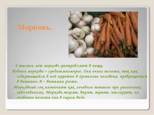 Морковь. 4 тысячи лет морковь употребляют в пищу. Родина моркови – средиземно