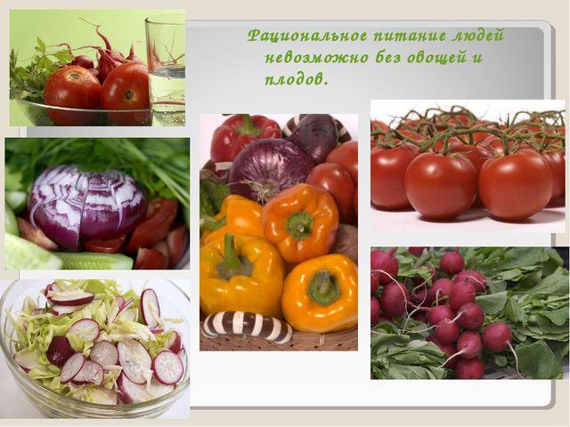 Рациональное питание людей невозможно без овощей и плодов.