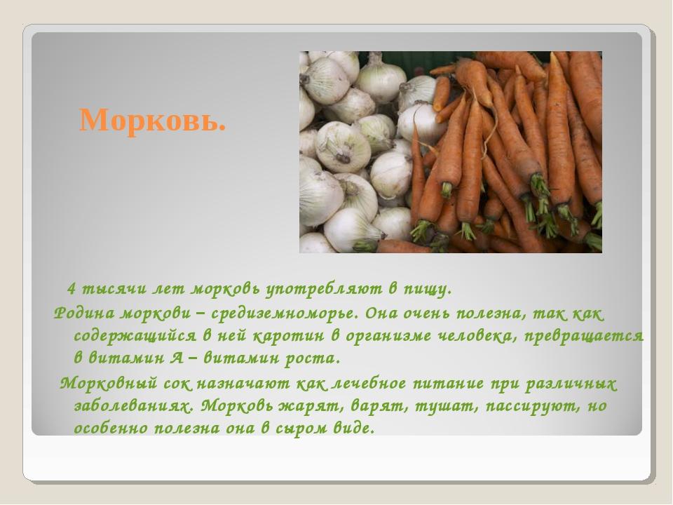 Морковь. 4 тысячи лет морковь употребляют в пищу. Родина моркови – средиземно...