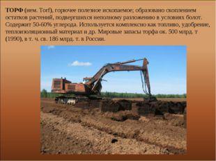 ТОРФ (нем. Torf), горючее полезное ископаемое; образовано скоплением остатков