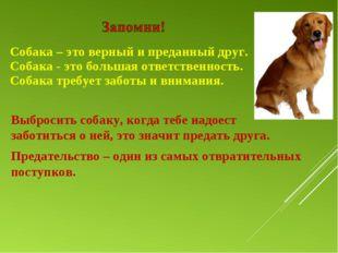 Собака – это верный и преданный друг. Собака - это большая ответственность. С