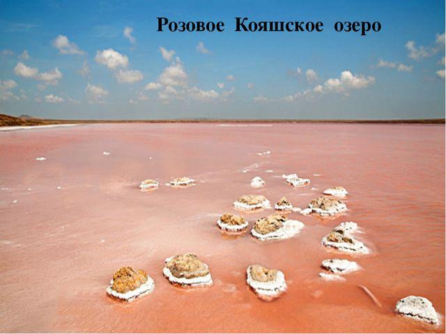 розовое озеро в Крыму Розовое Кояшское озеро