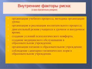 Внутренние факторы риска: (в самом образовательном учреждении) организация уч
