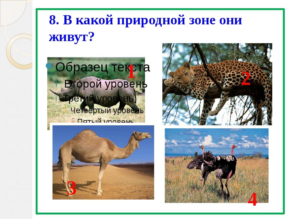 8. В какой природной зоне они живут? 1 2 3 4