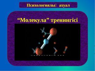 """Психологиялық ахуал """"Молекула"""" тренингісі"""