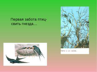Первая забота птиц- свить гнезда…