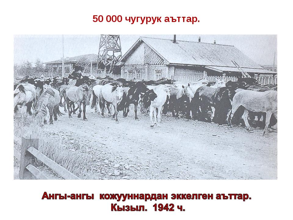 50 000 чугурук аъттар.