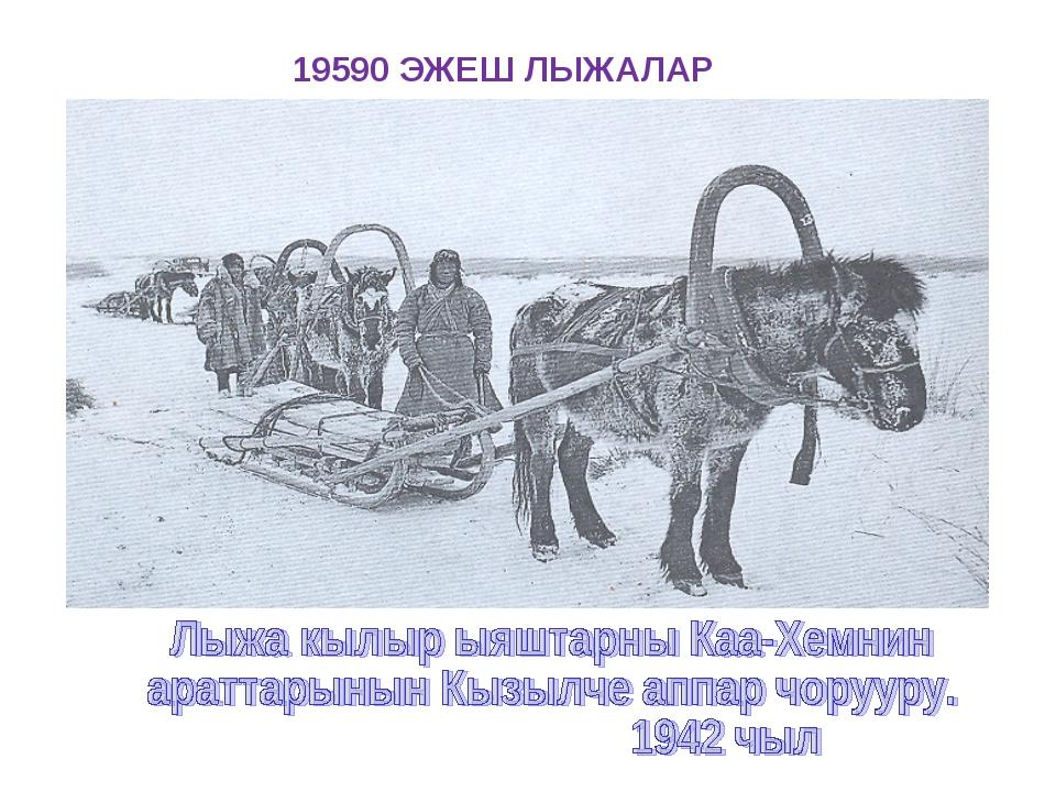 19590 ЭЖЕШ ЛЫЖАЛАР
