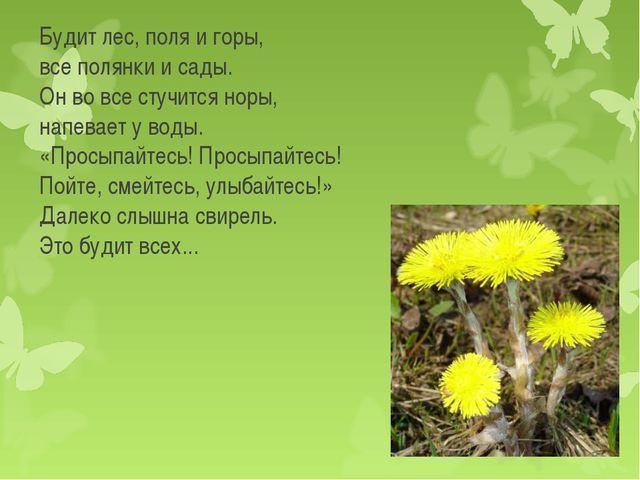 Будит лес, поля и горы, все полянки и сады. Он во все стучится норы, напевает...