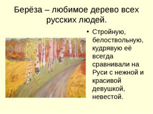 Берёза – любимое дерево всех русских людей. Стройную, белоствольную, кудрявую