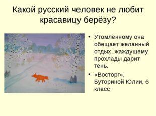 Какой русский человек не любит красавицу берёзу? Утомлённому она обещает жела