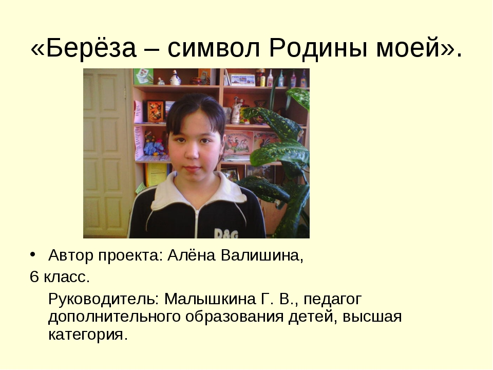«Берёза – символ Родины моей». Автор проекта: Алёна Валишина, 6 класс. Руково...
