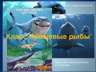 Класс Хрящевые рыбы Подготовил учитель биологии Е.Н. Буянова МБОУ г. Иркутск