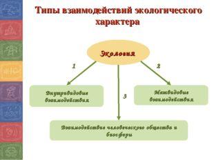 Типы взаимодействий экологического характера Экология 1 3 2 Внутривидовые вза