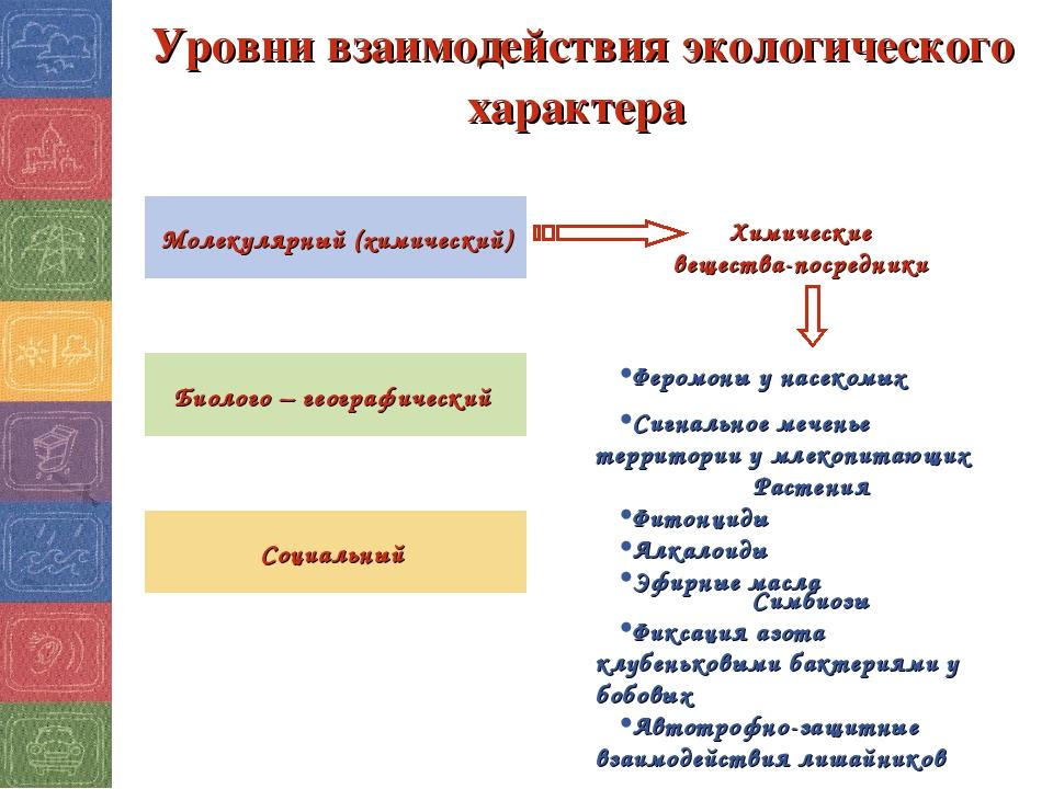 Уровни взаимодействия экологического характера Молекулярный (химический) Биол...