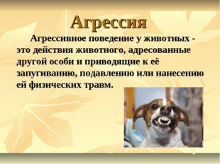 Агрессия Агрессивное поведение у животных - это действия животного, адресов