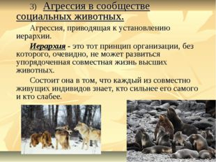3) Агрессия в сообществе социальных животных. Агрессия, приводящая к уста