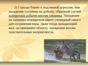 2) Гораздо ближе к подлинной агрессии, чем нападение охотника на добычу, об