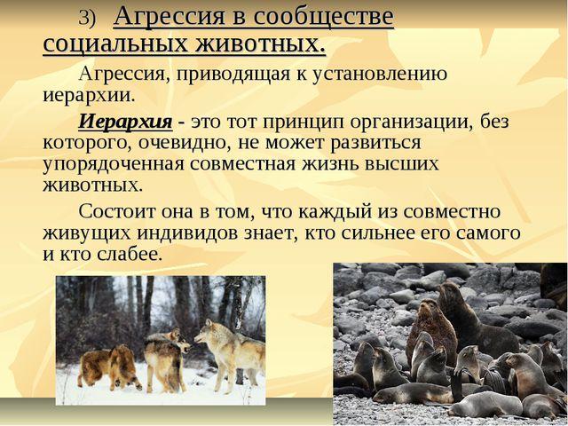 3) Агрессия в сообществе социальных животных. Агрессия, приводящая к уста...