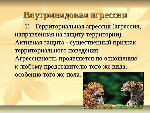 Внутривидовая агрессия 1) Территориальная агрессия (агрессия, направленная н...
