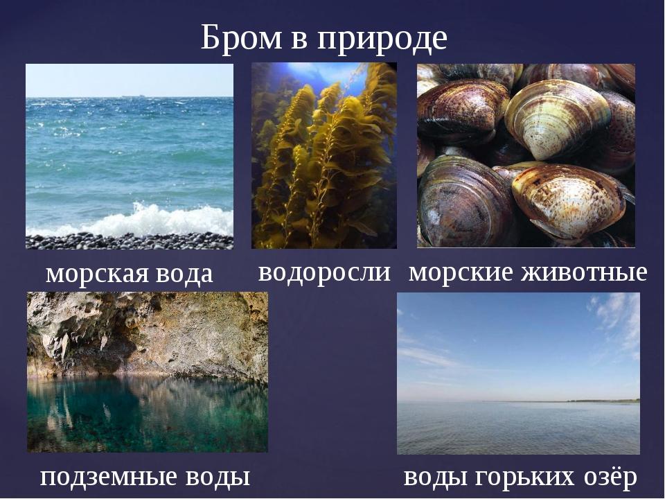 Бром в природе водоросли морская вода воды горьких озёр подземные воды морски...