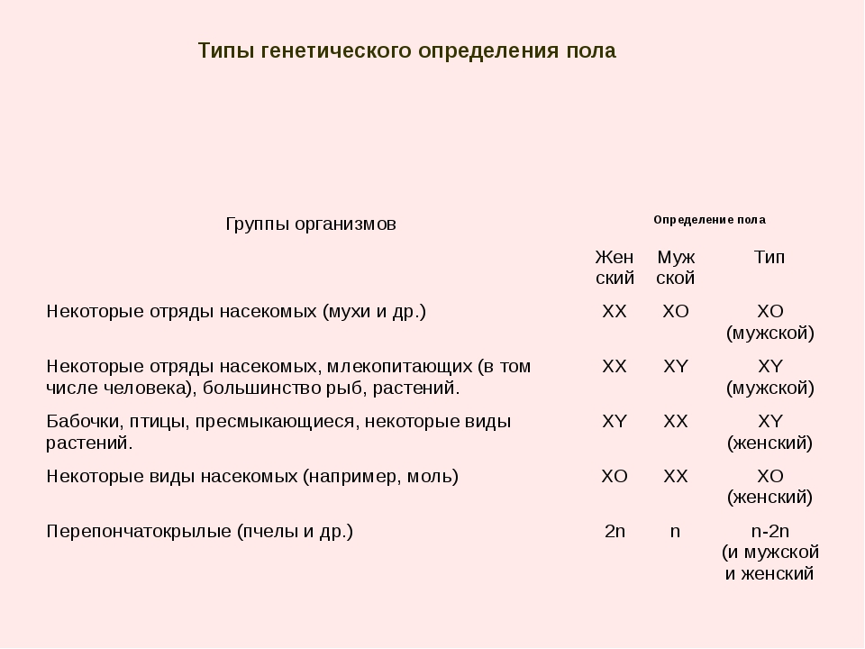 Типы генетического определения пола Группы организмов Определение пола Женски...
