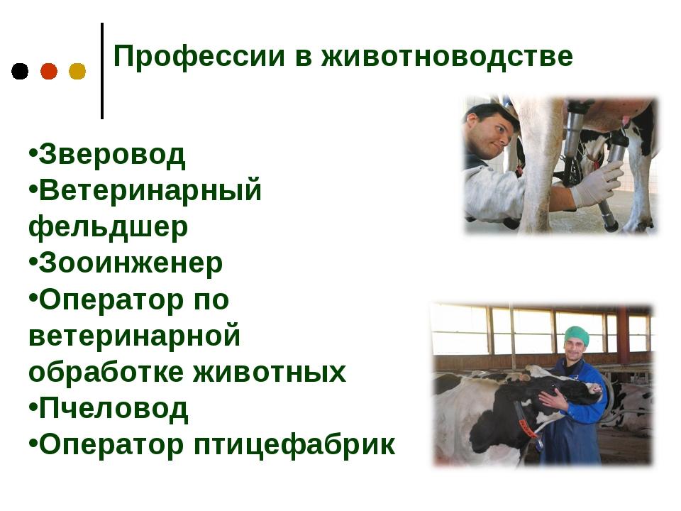 законе картинки о профессии животновода бампер должен