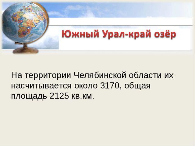 На территории Челябинской области их насчитывается около 3170, общая площадь...