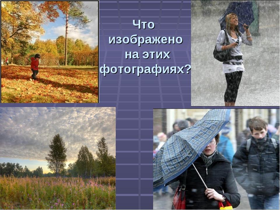Что изображено на этих фотографиях?