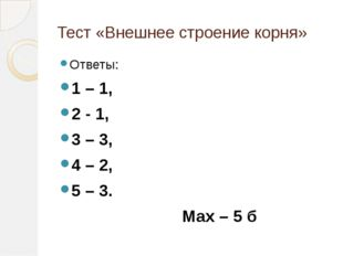 Тест «Внешнее строение корня» Ответы: 1 – 1, 2 - 1, 3 – 3, 4 – 2, 5 – 3. Мах