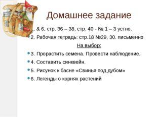 Домашнее задание 1. & 6, стр. 36 – 38, стр. 40 - № 1 – 3 устно. 2. Рабочая те