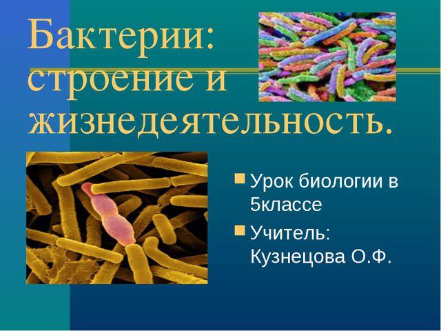 Бактерии: строение и жизнедеятельность. Урок биологии в 5классе Учитель: Кузн...