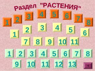 1 1 1 2 3 4 5 6 7 8 2 3 4 5 6 2 3 4 9 10 11 12 13 11 10 7 8 9 5 6 7 8