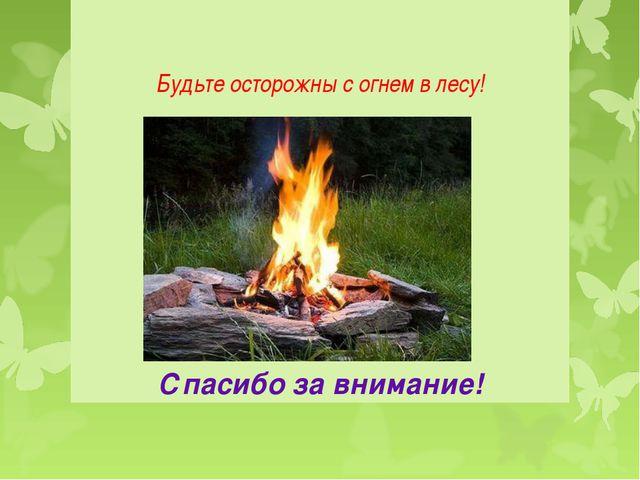 Будьте осторожны с огнем в лесу! Спасибо за внимание!