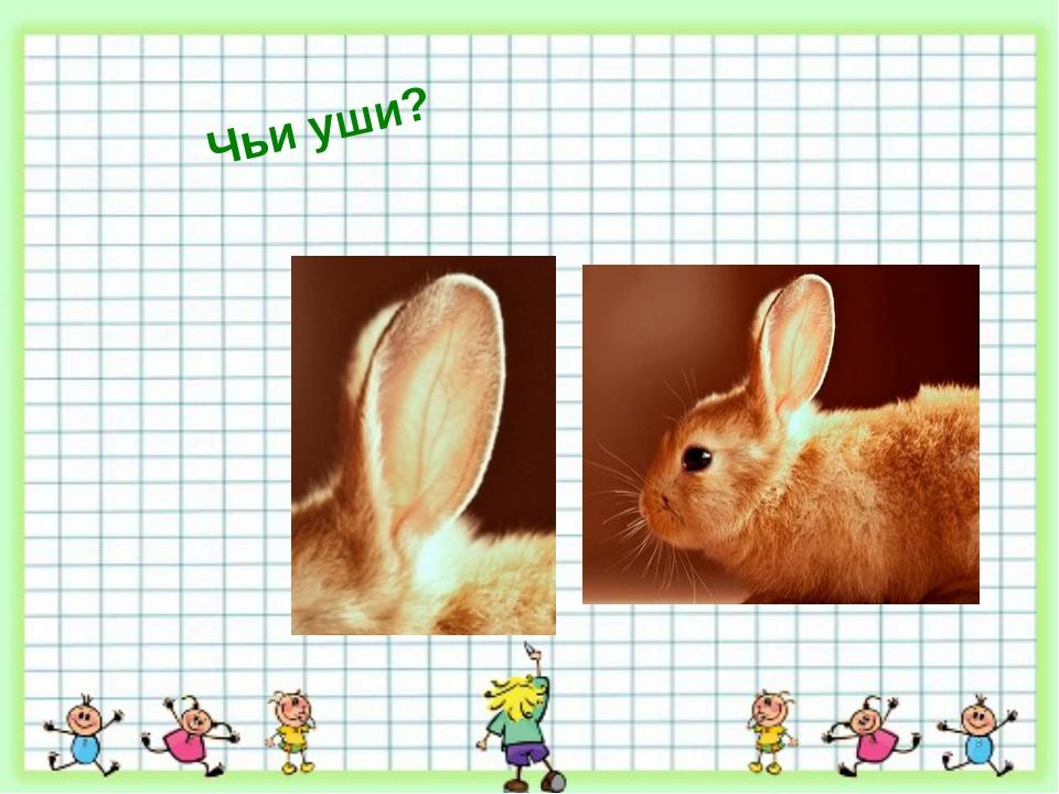 Чьи уши?