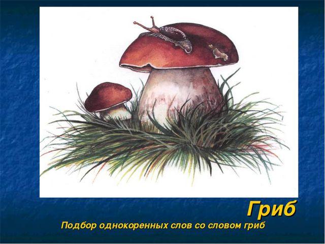 Гриб Подбор однокоренных слов со словом гриб